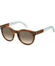 Tommy Hilfiger Panie TH 1291-NS m9g J6 Havana Brown lazurowych okulary