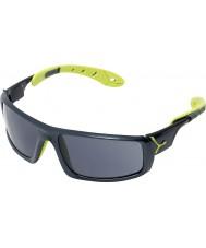 Cebe Ice 8000 antracyt niebieskie okulary anis