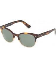 Police Mężczyźni mistrzowskie 4 spl143-0z40 błyszczące okulary Hawana