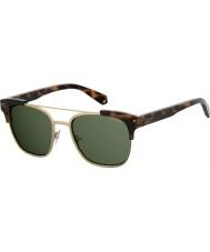 Polaroid Pld 6039 sx 086 uc 54 okulary przeciwsłoneczne