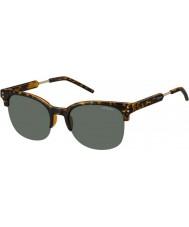 Polaroid pld2031-S mężczyzna nho rc Hawana złota spolaryzowane okulary