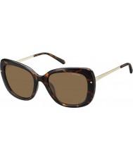 Polaroid pld4044-S Women nho ig Hawana złota spolaryzowane okulary
