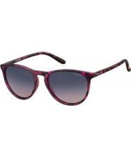 Polaroid Pld6003-n SRR Q2 Havana fuksja spolaryzowane okulary