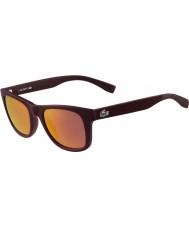 Lacoste L790s matowy bordowy okulary