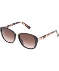 Furla Kolegium Ladies su4905r-0d84 błyszczące pełne brązowe okulary